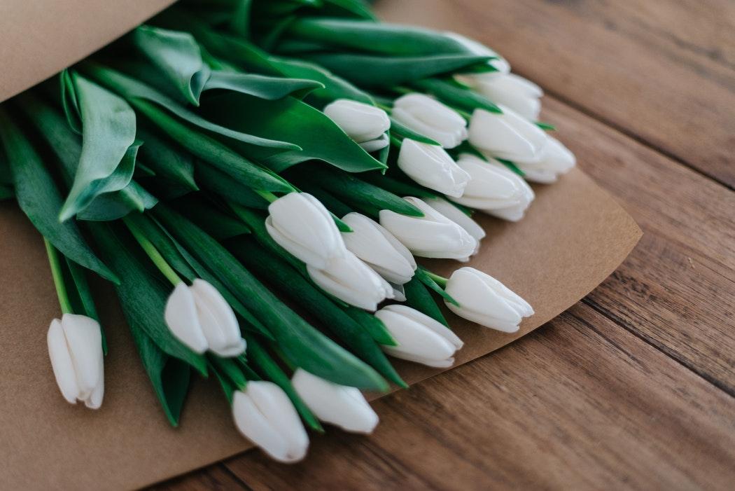 4 Best Burial Insurance for Seniors 2019